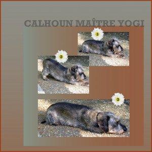 Calhoun yogi dans Digiscrap 59-300x300