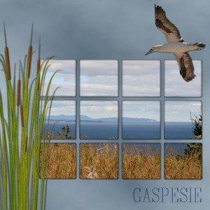 5.La  Gaspésie2