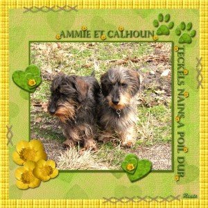 23. Ammie et Calhoun